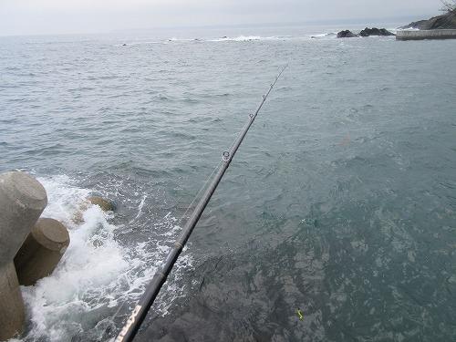 freedom-fishing139